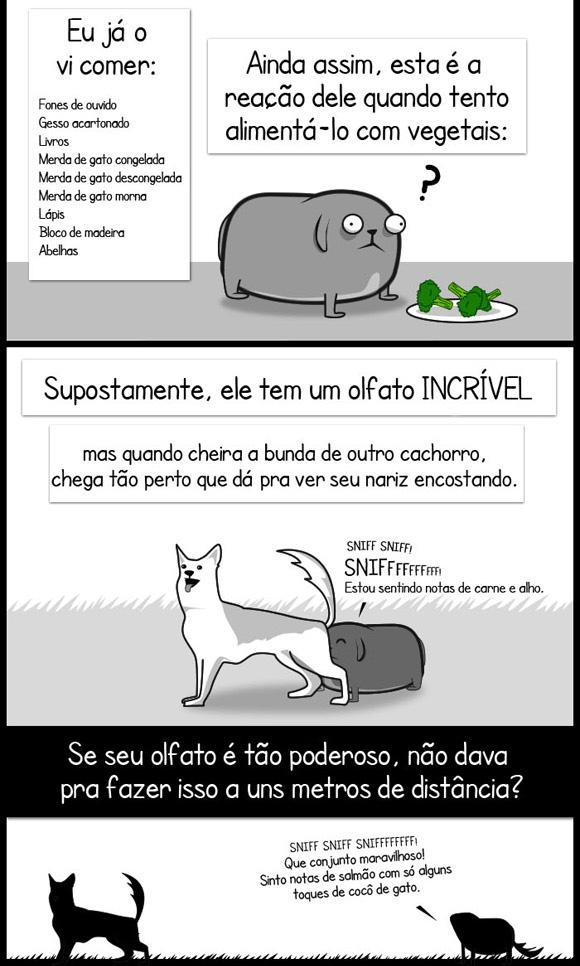 Meu cachorro é foda, um paradoxo - www.publicitario13.com.br