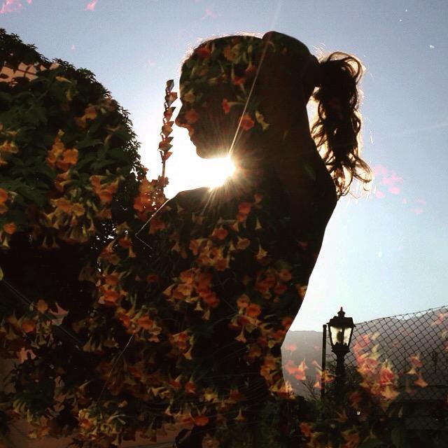 Silhueta com flores