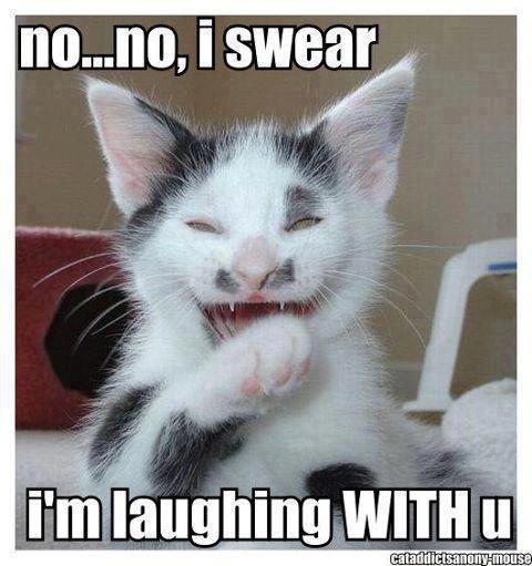 Cat In The Hat Laugh