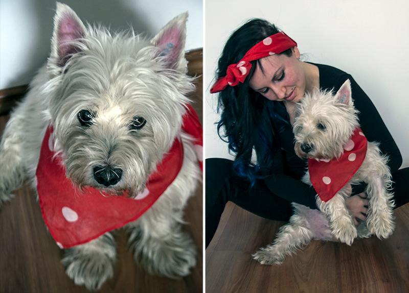 For Peet's Sake blog Leos westie West Highland Terrier
