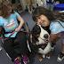 Ένας σκύλος που βοηθάει τα παιδιά να διαβάσουν...