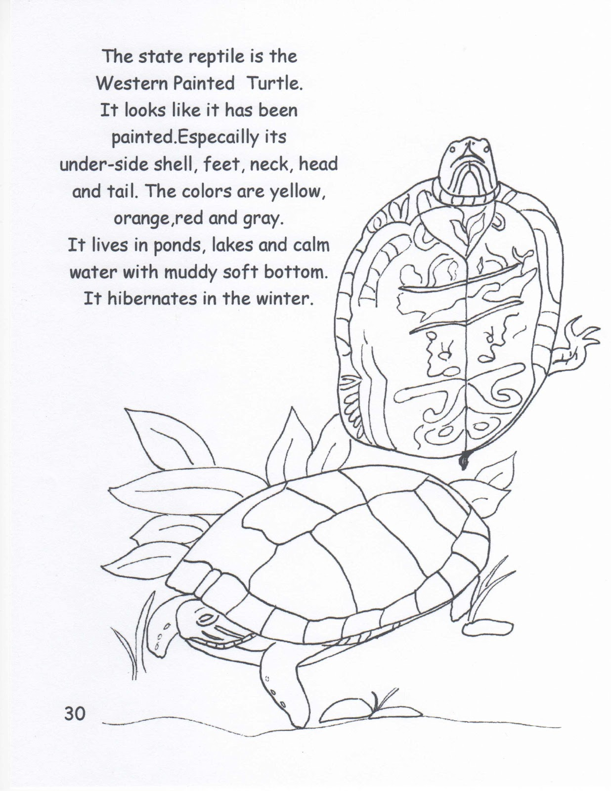 colorado state flag coloring page laura williams