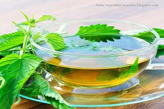 nettle_tea_fruits-vegetables-benefits.blogspot.com(health_benefits_of_nettle_leaf_tea)