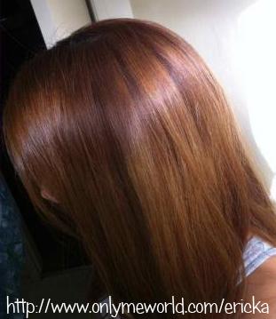 Erickaonlymeworld Kao Liese Prettia Bubble Hair Color