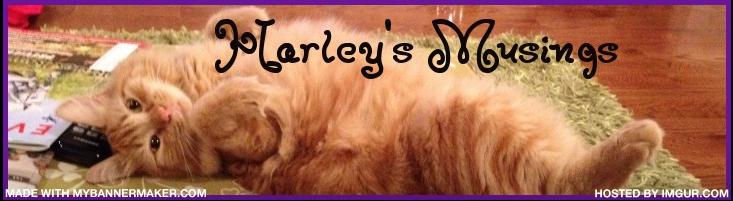 Harley's Musings