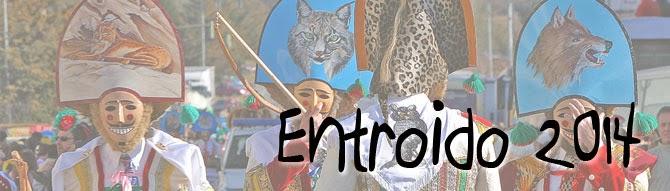 http://www.xunta.es/linguagalega/entroido_2014