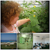 Προσκλήσεις χονδρεμπόρων από την Βουλγαρία 1-4 Ιουλίου 2013