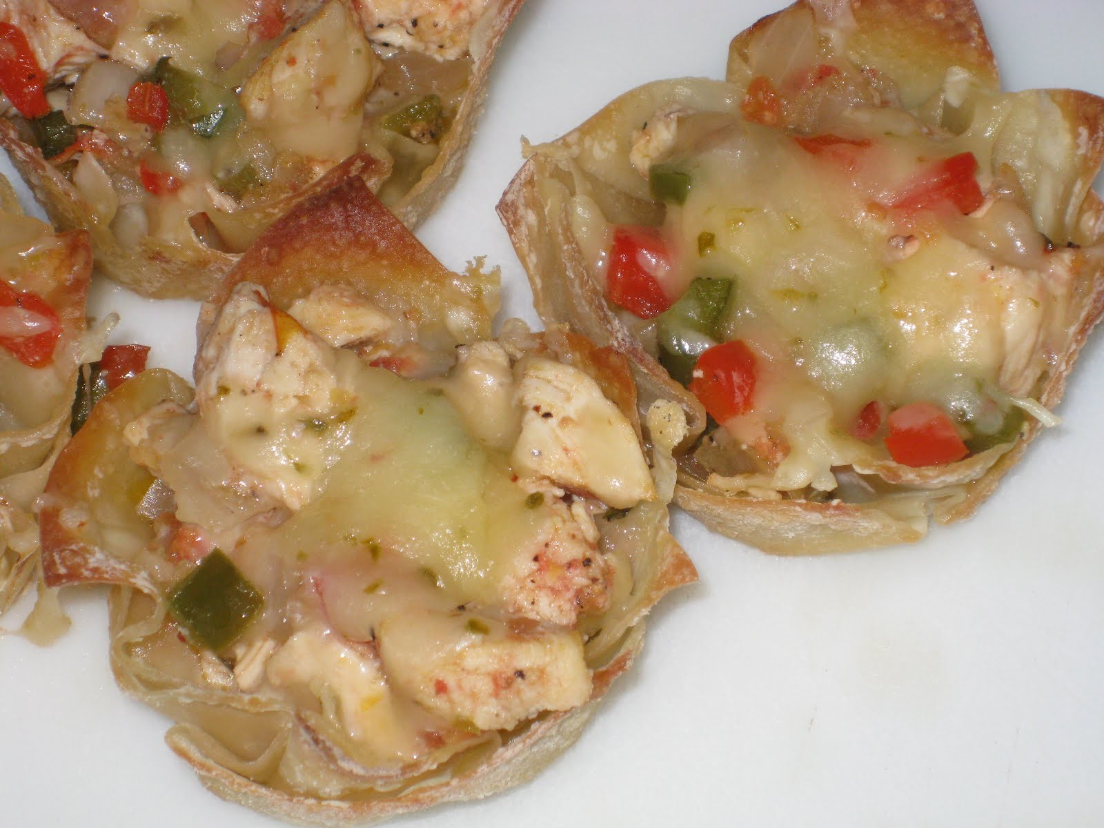 Bonz Blogz: Spicy Chicken and Pepper Jack Wontons