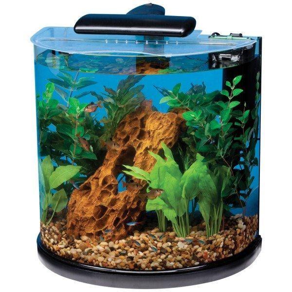 Petsmart marineland half moon 10 gallon fish aquarium for Fish tank review