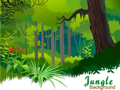Jungla - ilustraciones vectoriales - 3