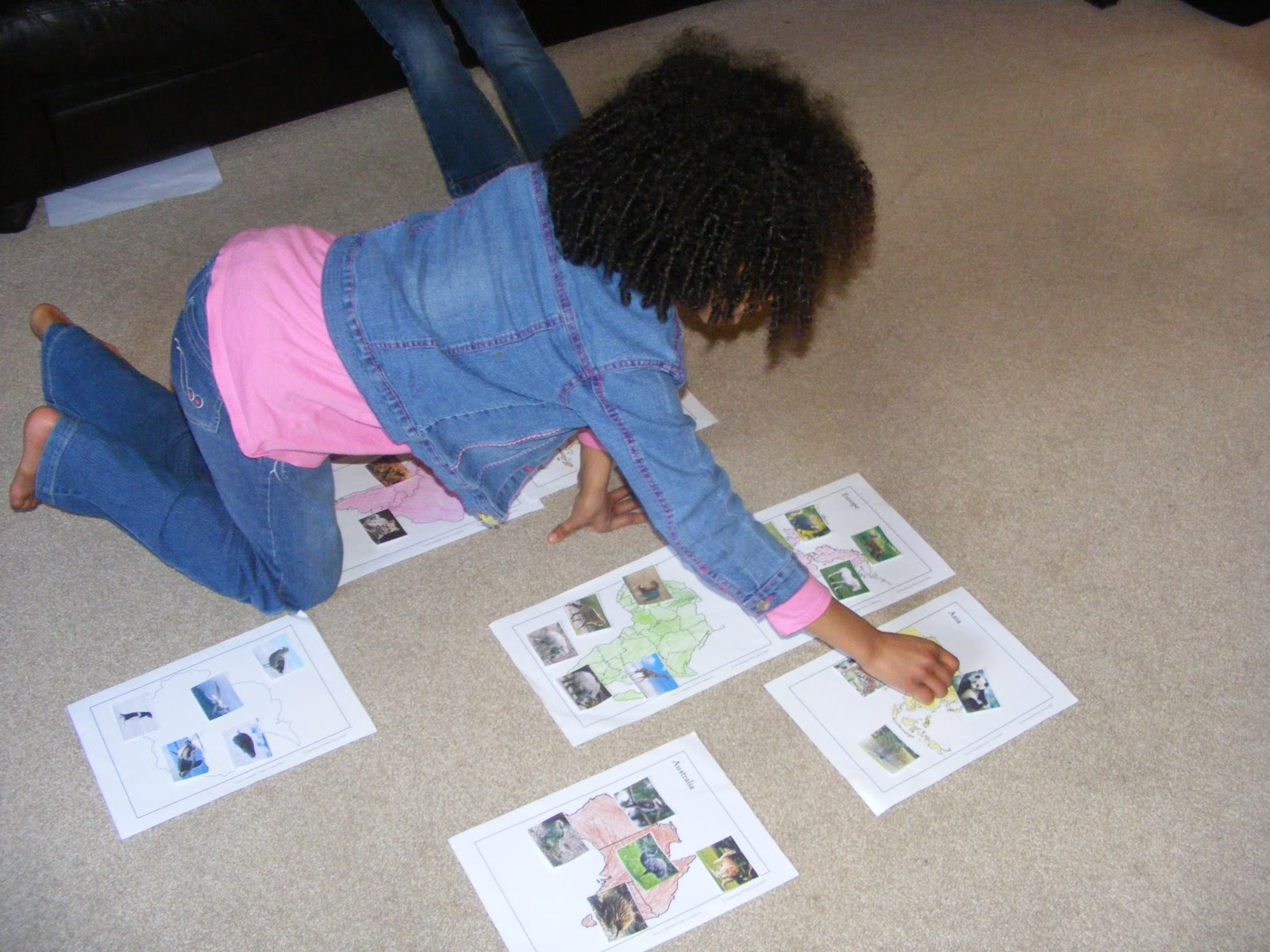 Animals of the World Activity (Photo from Homeschool Escapade)