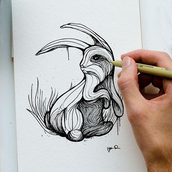 kyson dana alphabet animal illustrations-11