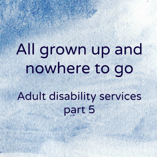 A FIVE year wait for adult disability services? (Part 5)