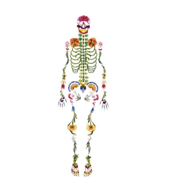 flower pressed flower skull art skeleton tada asuka 押し花 骸骨 骨 多田明日香