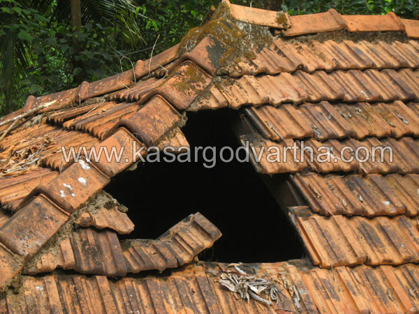 House, Destroy, Injured, Trikaripur, Kasaragod, Kerala, Malayalam news, Kasargod Vartha, Kerala News, International News, National News, Gulf News, Health News, Educational News, Business News, Stock news, Gold News