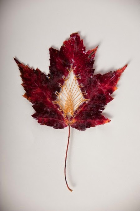 from fallen leaves into a beautiful artwork