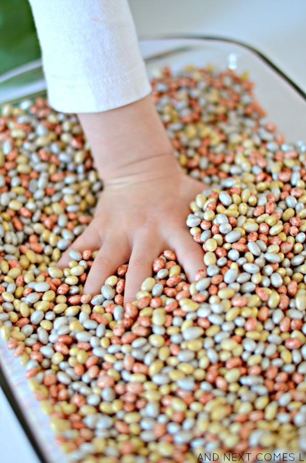 Sensory play for kids using metallic dyed beans from And Next Comes L