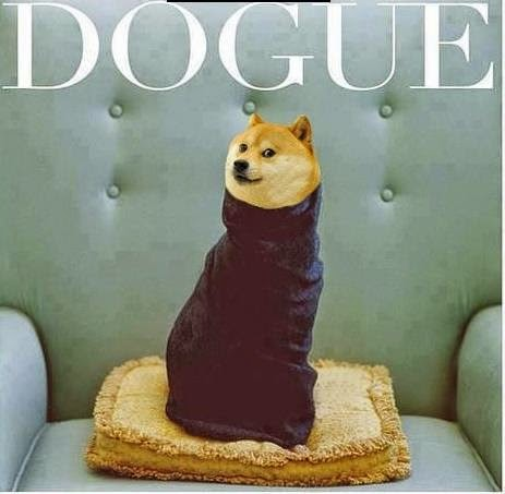 dogue kardashian