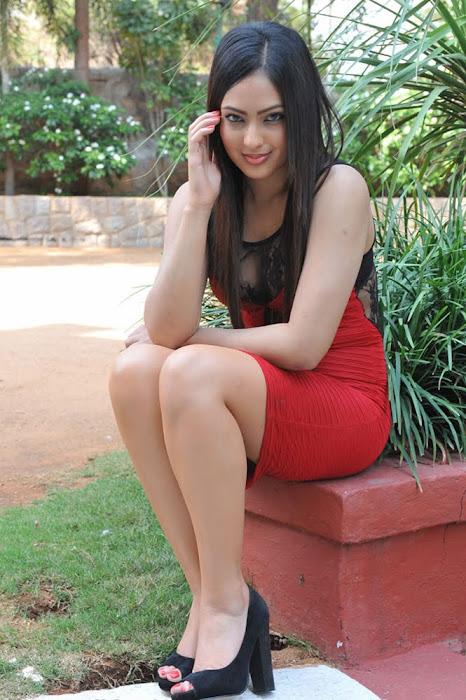 nikesha patel new glamour  images