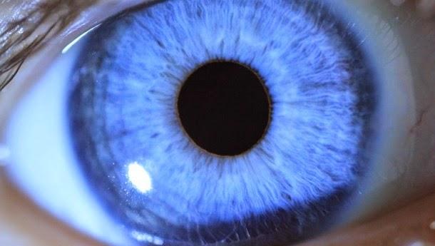 Seres humanos só começaram a ver a cor azul em tempos modernos, sugere pesquisa