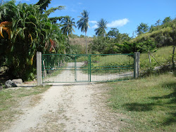 Who ordered Sabwisha Beach fenced?