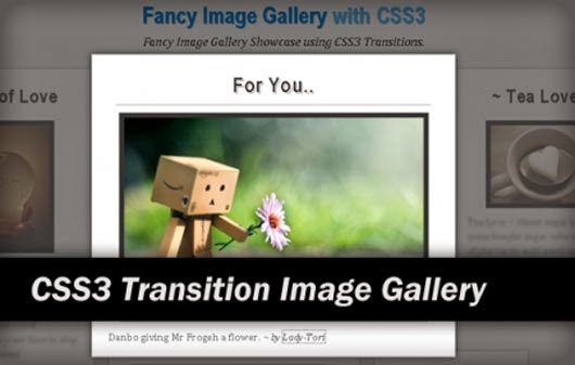 CSS3 Animation and Transition Tutorials