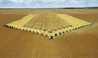 Agronegócio brasileiro vai crescer ainda mais em 2012