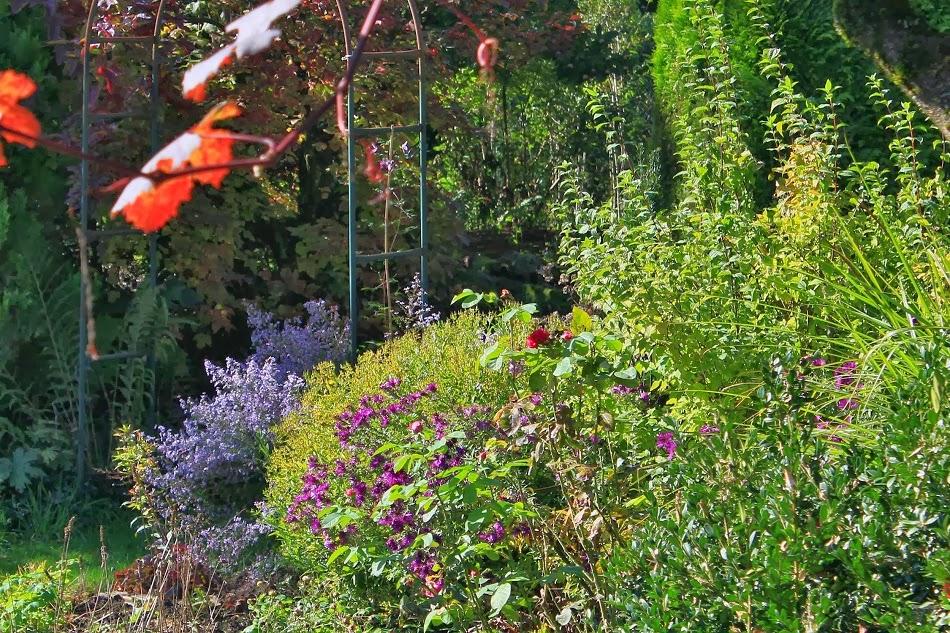 Le jardin de brigitte alsace petit tour du jardin en ce fin octobre - Petit jardin octobre brest ...