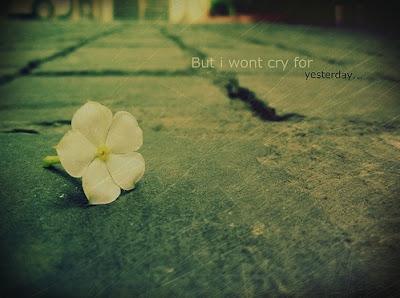 I Wont Cry