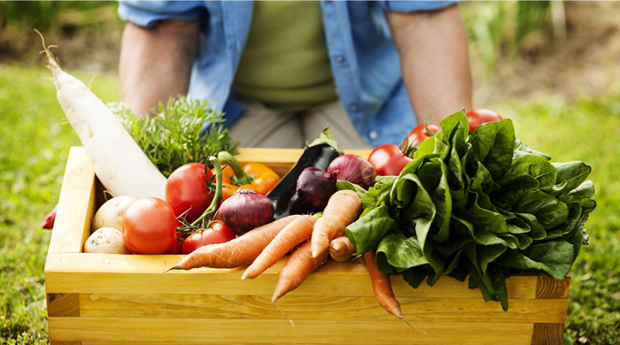 Organics Live certified organic home produce delivery