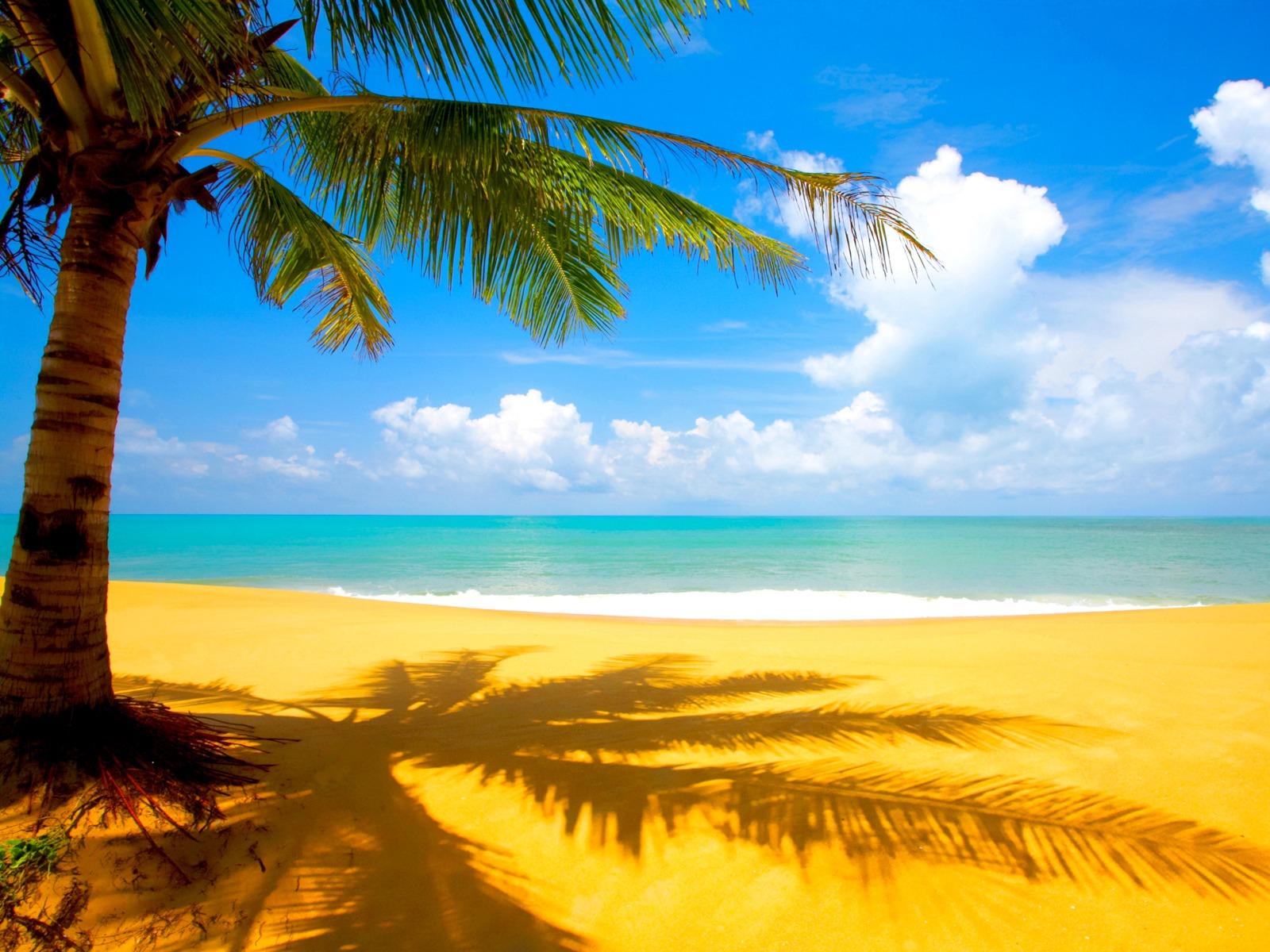 http://2.bp.blogspot.com/-MQ459CYTdVc/T8Xx-g4YHfI/AAAAAAAAAb4/I2CZWbS6GcA/s1600/Beach+Wallpaper+Photo.jpg