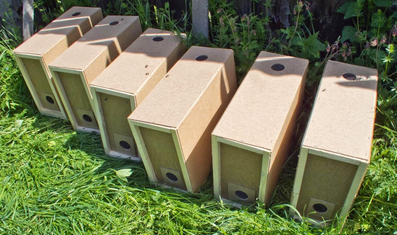 Блог пчеловода для любителей мёда. Пчеловодство для начинающих и не только!