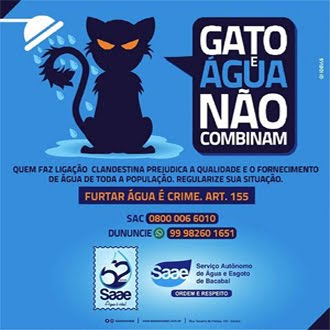 CAMPANHA SAAE: GATO E ÁGUA NÃO COMBINAM