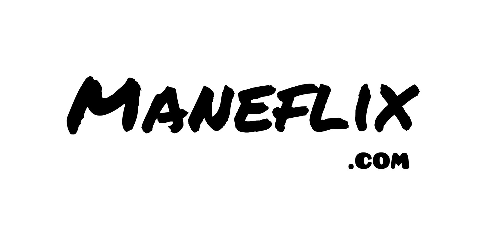 MANEFLIX BLOG