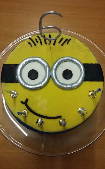 DIY Childrens Parties Birthday Cake