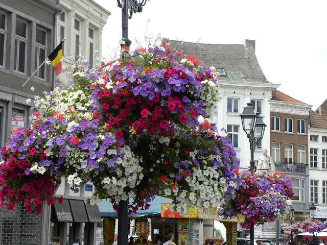 De Witten Vos Mechelen