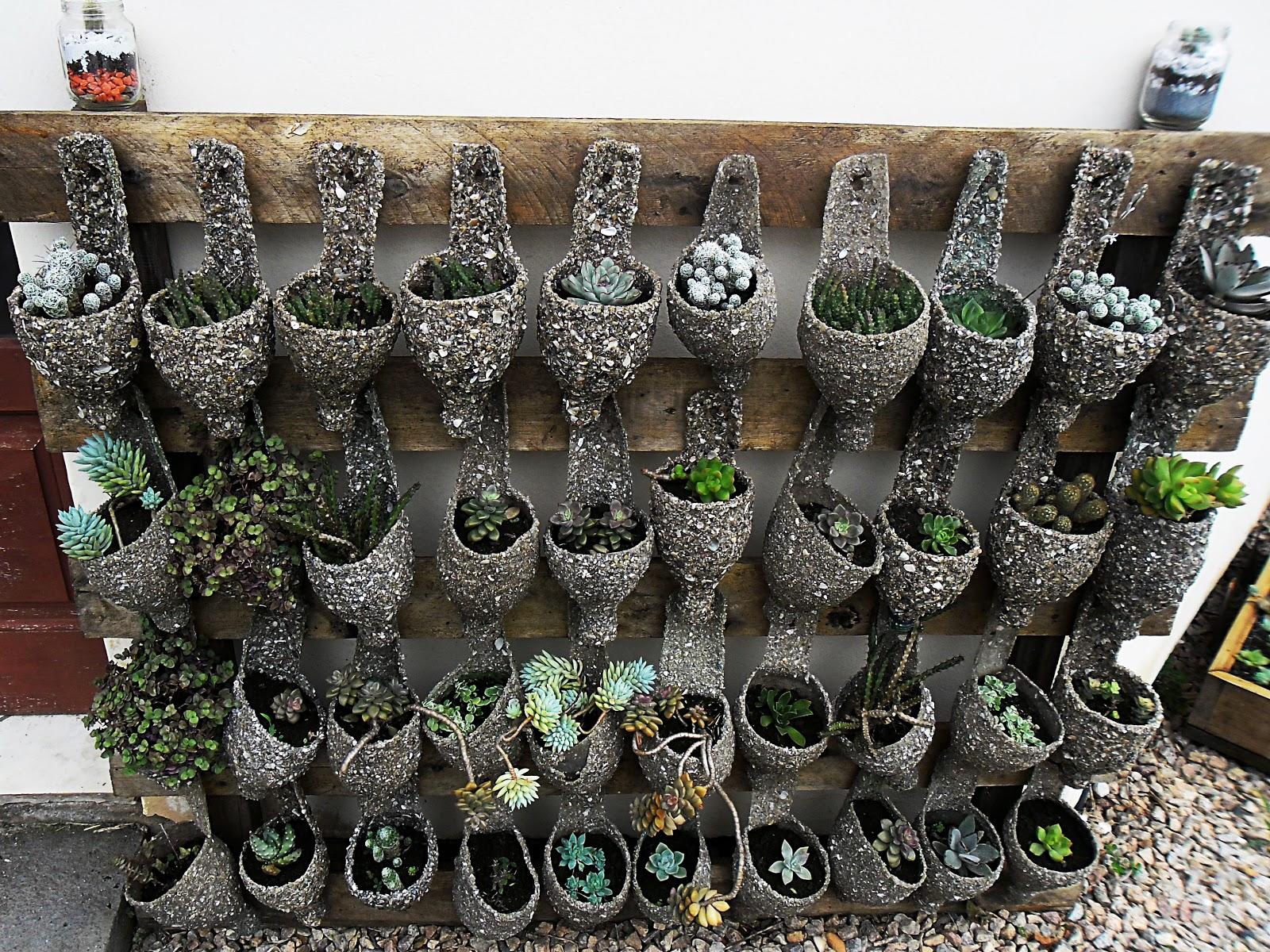 fazer jardim vertical garrafa pet: com a parte superior da garrafa com lindas suculentas plantadas