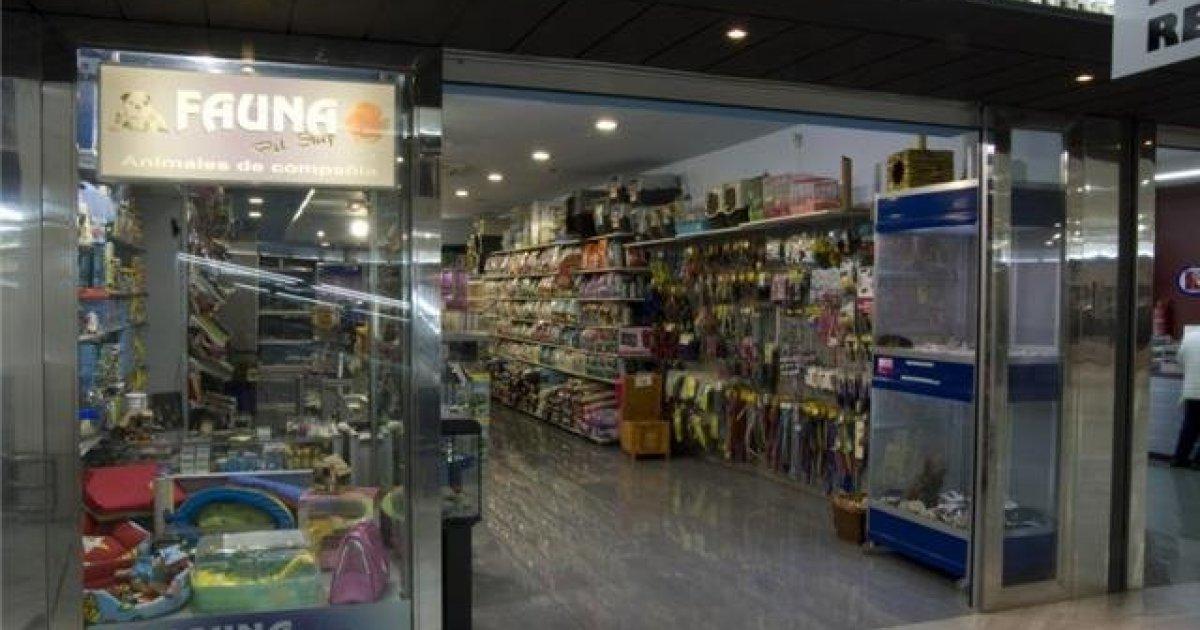 Prohibir la venta de perros y gatos en tiendas de animales