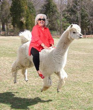 Paula Deen Riding A Llama