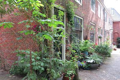 container garden, flowers, Haafner, Haarlem, urban garden
