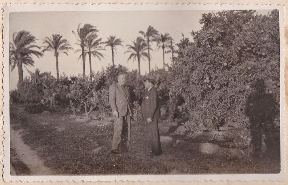 Naranjos y palmeras, Valencia, años 30