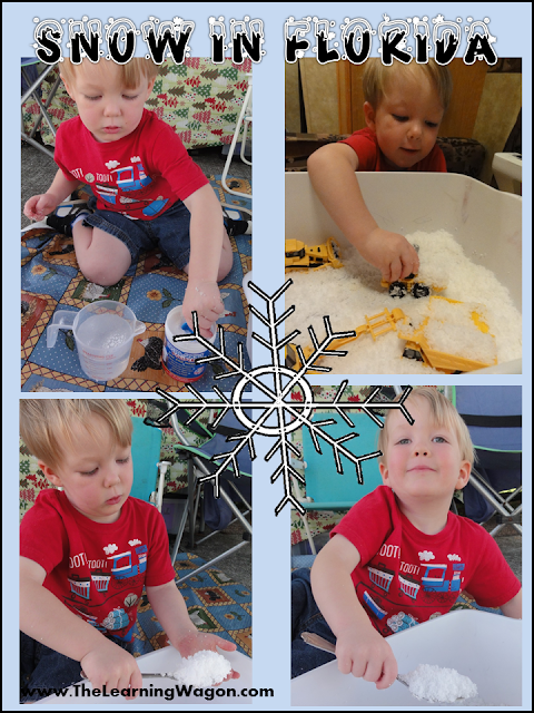 http://rvclassroom.blogspot.com/2013/12/its-snowing-in-florida.html