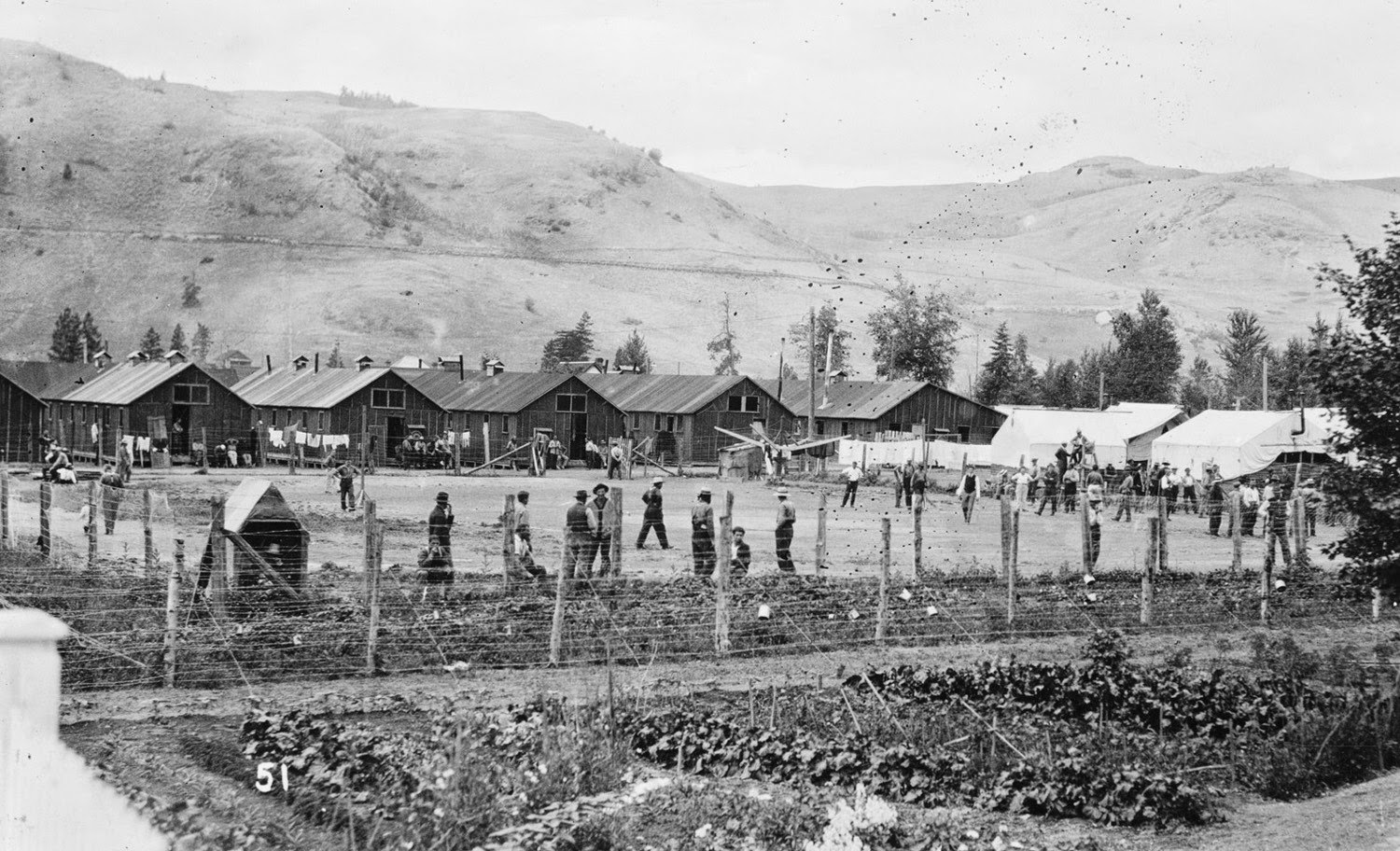 WW1 Vernon Internment Camp Graves Being Restored