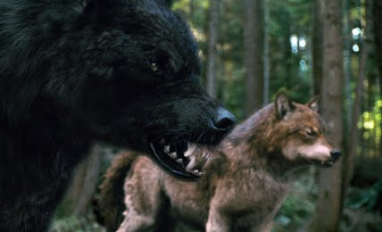 twilight wolf pack names