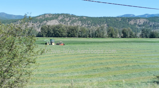 The tractor and equipment are shown cutting the hay