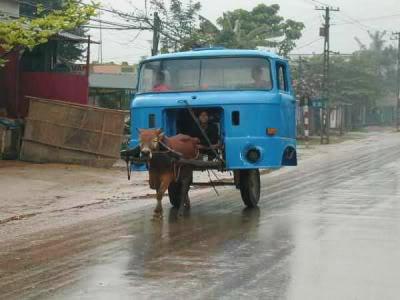 Inventos cubanos - Página 2 Carreta_cubana
