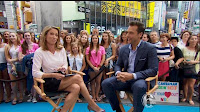 amy robach short skirt