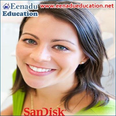 San Disk Various Jobs