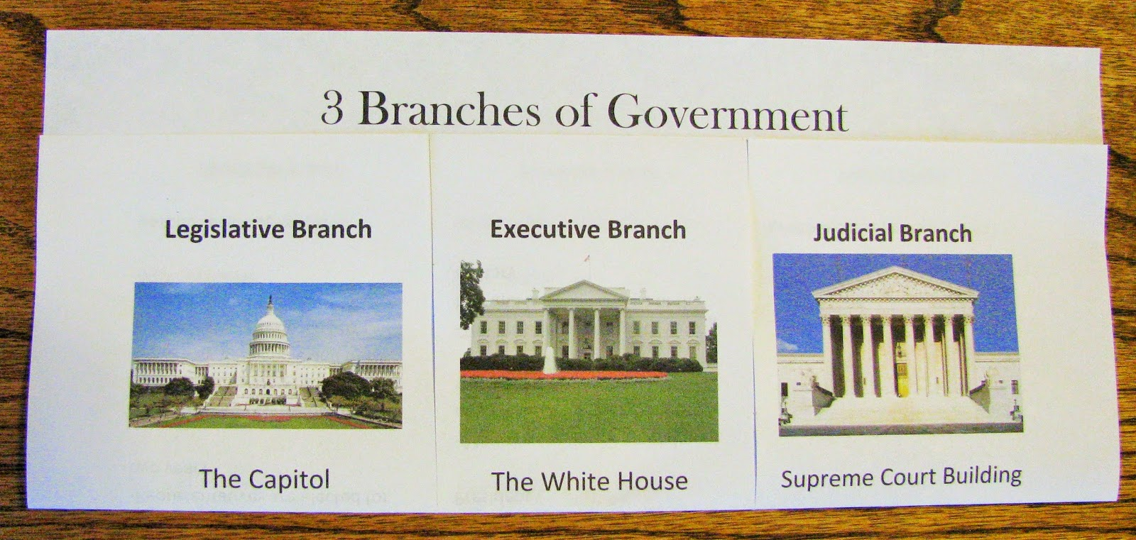 BRANCHES OF GOVERNMENT - YouTube