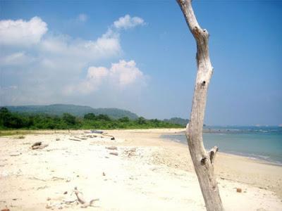 Pantai Tanjung Lesung yang masih asri